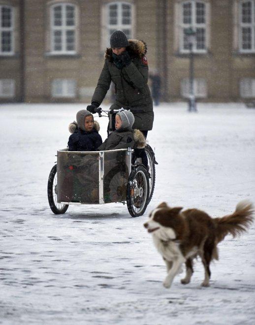 ... quando la fotografia della principessa Mary di Danimarca in sella alla  sua bicicletta cargo con i due gemellini infilati nel cestello verso  l asilo ha ... 6426b581e2f