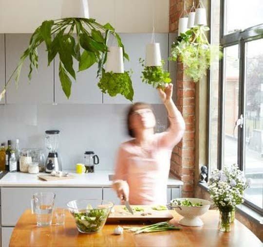 10 idee per arredare con le piante aromatiche - Erbe aromatiche in casa ...