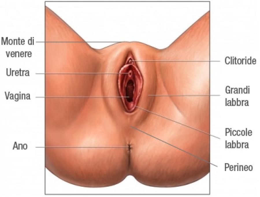 grande nero anale sesso